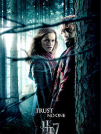 Hermione and Ron Poster
