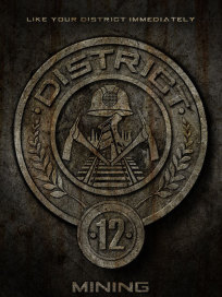District 12 Badge