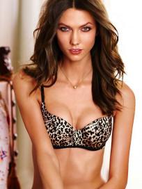 Karlie Kloss Bikini Photo