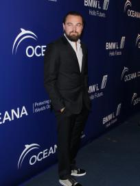 Leonardo DiCaprio Red Carpet Image