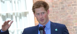 Should Prince Harry pose in Playgirl?