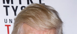 Donald trump photograph