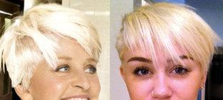 Ellen degeneres vs miley