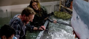 What should a Sharknado sequel be titled?