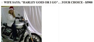 Wife harley for sale on craigslist
