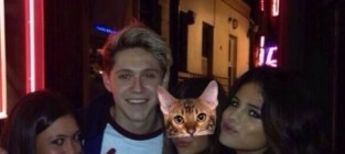 Selena Gomez and Niall Horan: New Couple Alert?!?