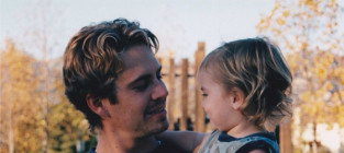 Paul walker meadow walker
