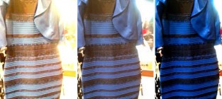 The dress blue or white