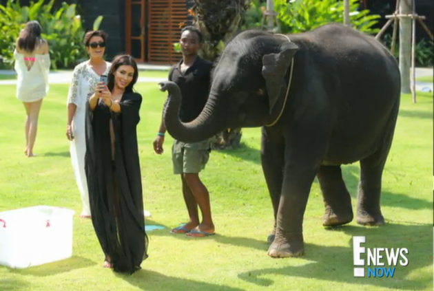 Kim Kardashian Attempts Selfie, Gets Attacked by Elephant in Thailand