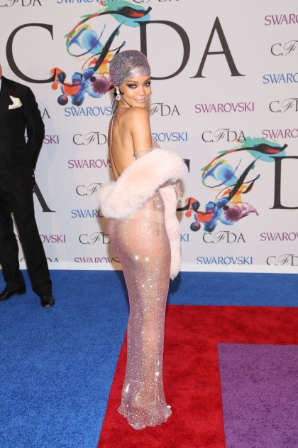 Rihanna Hot on the Red Carpet Photo