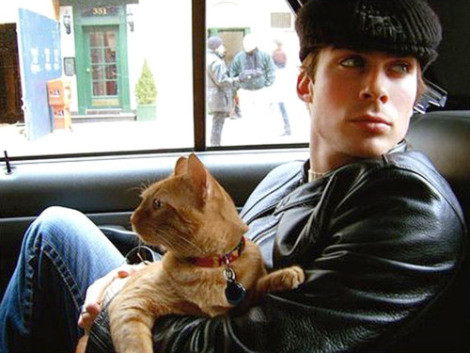 Sit on Ian Somerhalder's Lap