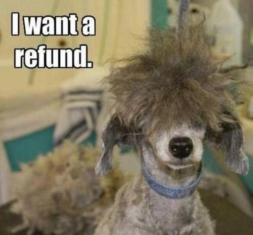 Refund Please!