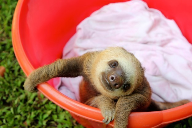 Look how cute I am!