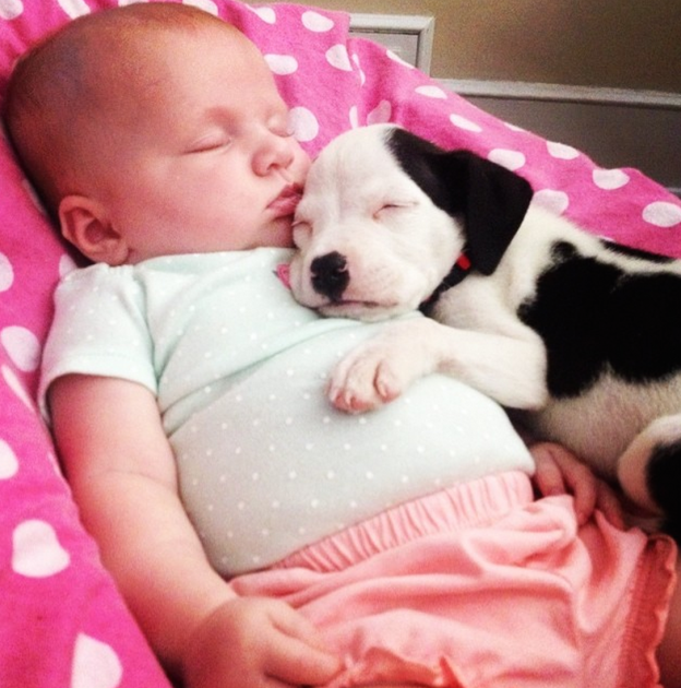 Baby and Puppy Nap Time