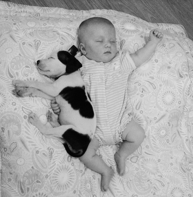 Puppy Naps with Baby