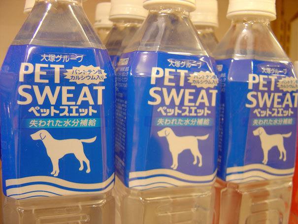 Pet Sweat