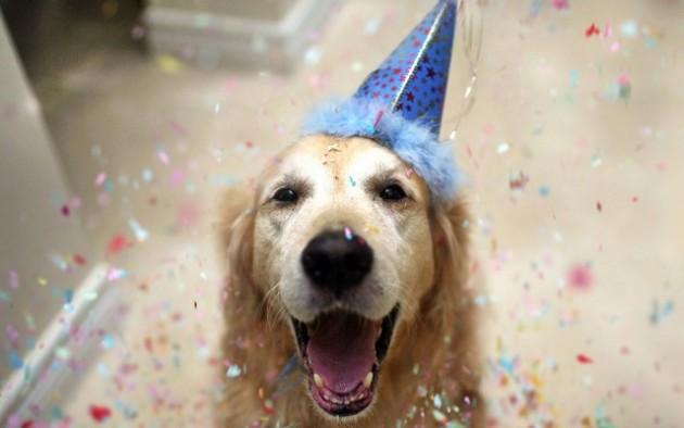 I won't throw him a birthday party.