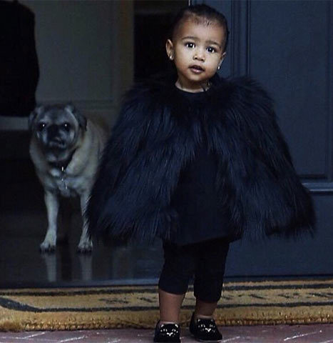Fancy North West