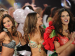 Victoria's Secret Fashion Show 2012 Pic