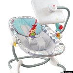 iPad Apptivity Bouncy Seat