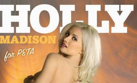 Holly Madison: Nude for PETA. Again.