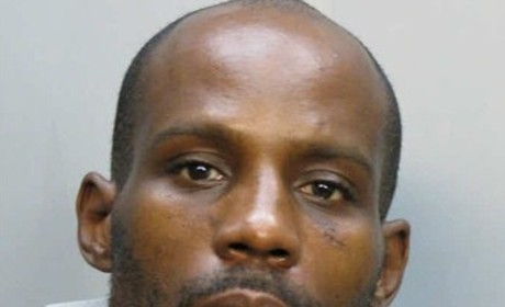 DMX Mug Shot, Take 8!