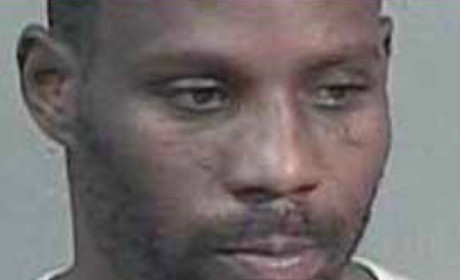 DMX: Three Cases, Four Guilty Pleas, One More Mug Shot!