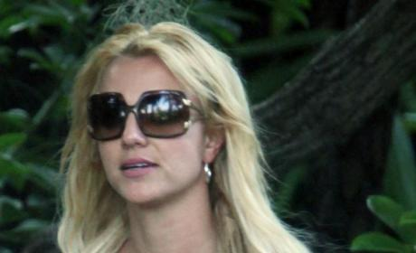 Celebrity Gossip Photographer Bails Out Britney Spears