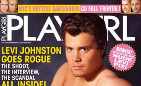 Playgirl Cover