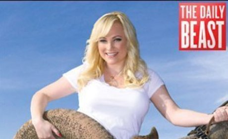 Meghan McCain Releases Dirty, Sexy Book Cover
