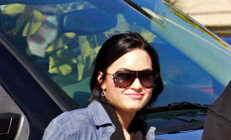Demi Lovato and Wilmer Valderrama: Dating? Getting Serious?!?