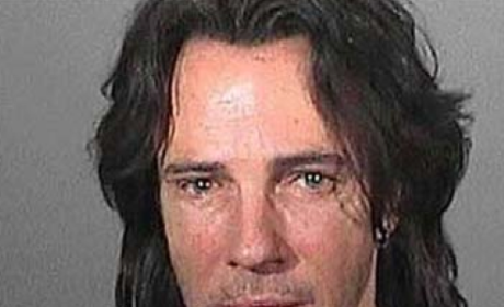 Rick Springfield Popped For DUI, Poses For Really Sad Mug Shot