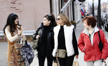 The Real Housewives of New Jersey: Sued!
