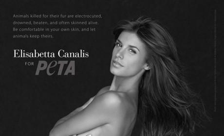 Elisabetta Canalis Naked Photo