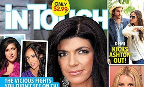 Why Does Everyone Hate Teresa Giudice?