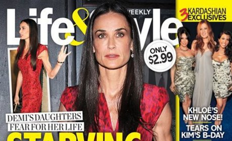 Demi Moore Checks into Utah Rehab Facility