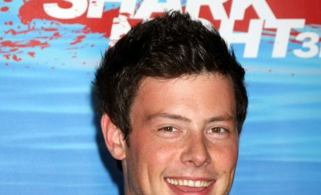 Cory Monteith Checks Into Rehab