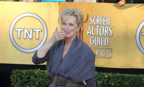 SAG Awards Fashion Face-Off: Meryl Streep vs. Viola Davis