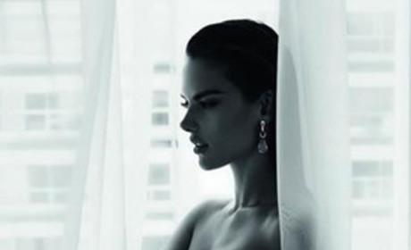 Alessandra Ambrosio Nude Photo