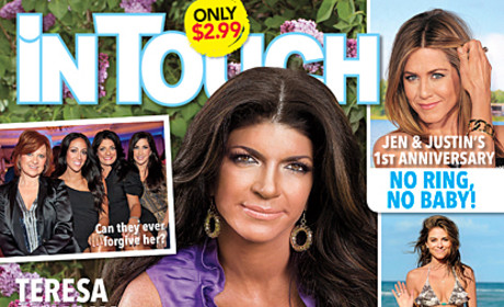Teresa Giudice to Real Housewives of New Jersey Castmates: Sorry!!!
