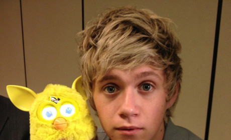 Niall Horan Twit Pic