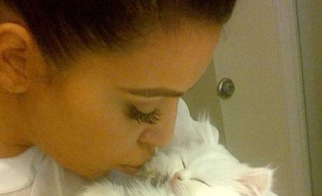 Kim Kardashian Mourns Death of Cat Mercy