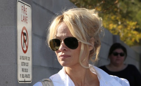 Pam Anderson Picture