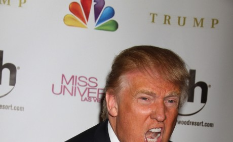 Donald Trump Sucks