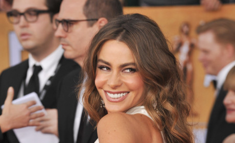 Happy 41st Birthday, Sofia Vergara!