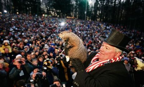 Groundhog Day 2013 Prediction Revealed: NO SHADOW!
