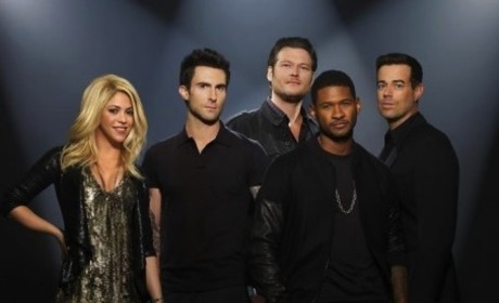 The Voice Season 4 Cast