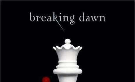 Jordan Scott Accuses Stephenie Meyer of Plagiarizing Breaking Dawn
