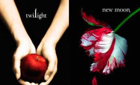 The Twilight Saga vs. The Vampire Diaries: Part I