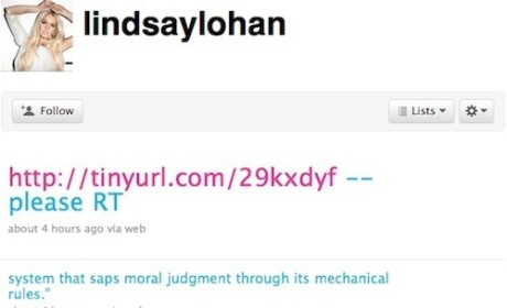 Lindsay Lohan Possibly Likens Her Jail Sentence to Human Rights Violation in Tweeting Rampage
